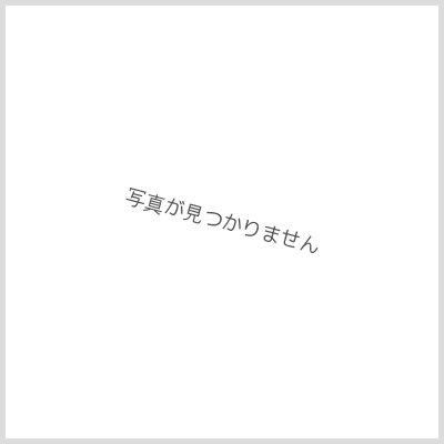 画像1: 【Panasonic】